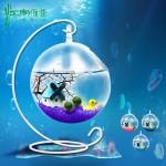 江南雨巷 吊瓶marimo幸福海藻球 新奇植物微景观生态瓶 时光地球仪 4色可选