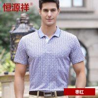恒源祥 男士短袖t恤父亲装夏装中年爸爸装polo衫保罗衫商务男装 22款可选
