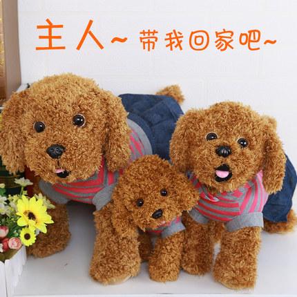 仿真泰迪狗公仔毛绒玩具小狗儿童布娃娃玩偶犬可爱萌
